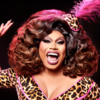You Brita Werk (From Home) **JUST ANNOUNCED**